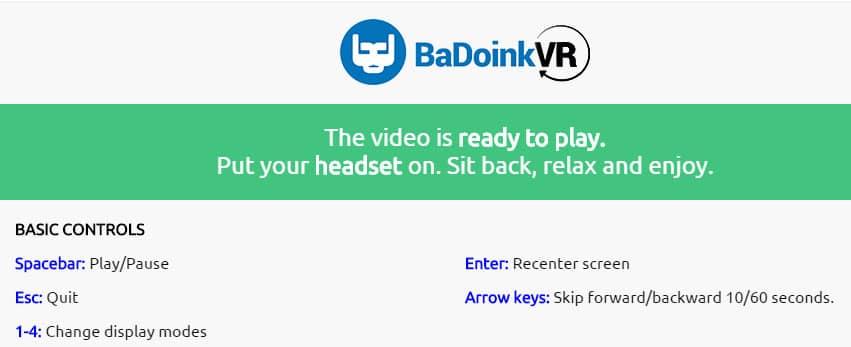 BaDoink VR Player